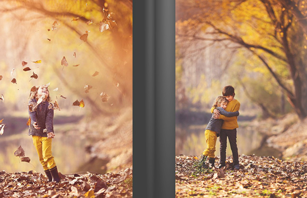 pippin-autumn