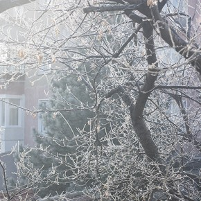 Студено, сутрешно и тихо