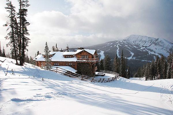 vesta mebel blog-Alpine Lone Moose
